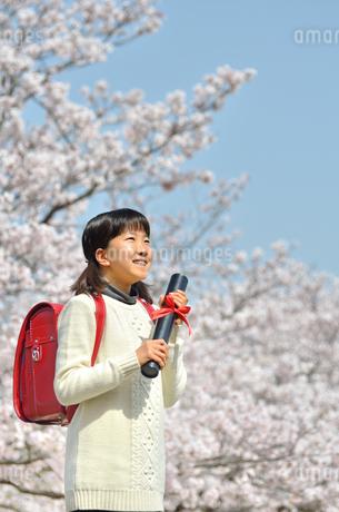 青空で卒業証書を持って笑う小学生の女の子(桜、ランドセル)の写真素材 [FYI02981232]