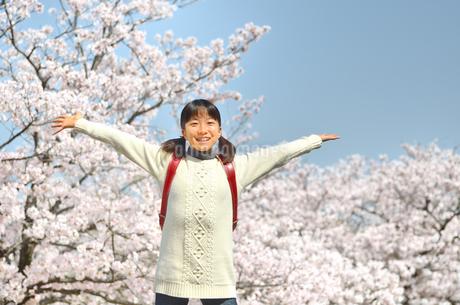 青空で笑う小学生の女の子(桜、ランドセル)の写真素材 [FYI02981243]