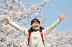 青空で笑う小学生の女の子(桜、ランドセル)の写真素材 [FYI02981245]
