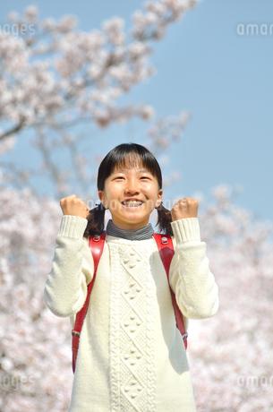 青空で笑う小学生の女の子(桜、ランドセル)の写真素材 [FYI02981248]