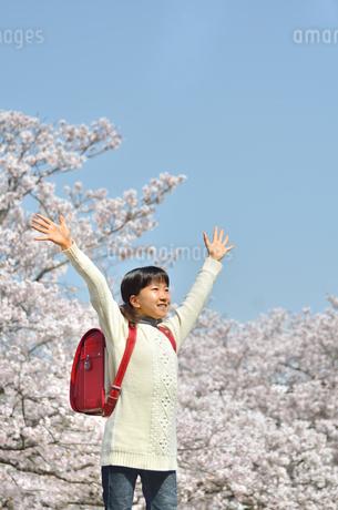 青空で笑う小学生の女の子(桜、ランドセル)の写真素材 [FYI02981250]