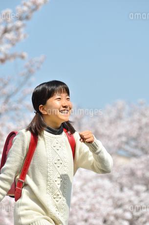 青空で笑う小学生の女の子(桜、ランドセル)の写真素材 [FYI02981252]