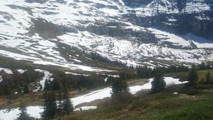 スイス ユングフラウ地方 クライネシャイディック~ヴェンゲンアルプ ハイキングコース 16の写真素材 [FYI02981298]