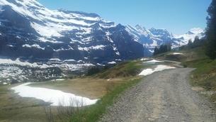 スイス ユングフラウ地方 クライネシャイディック~ヴェンゲンアルプ ハイキングコース 18の写真素材 [FYI02981300]