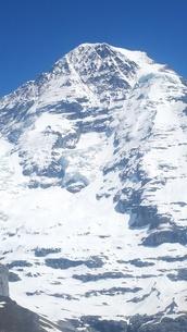スイス ユングフラウ地方 クライネシャイディック~ヴェンゲンアルプ ハイキングコース 20の写真素材 [FYI02981306]