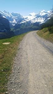 スイス ユングフラウ地方 クライネシャイディック~ヴェンゲンアルプ ハイキングコース 22の写真素材 [FYI02981309]