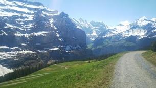 スイス ユングフラウ地方 クライネシャイディック~ヴェンゲンアルプ ハイキングコース 23の写真素材 [FYI02981310]
