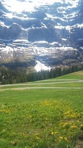 スイス ユングフラウ地方 クライネシャイディック~ヴェンゲンアルプ ハイキングコース 25の写真素材 [FYI02981312]