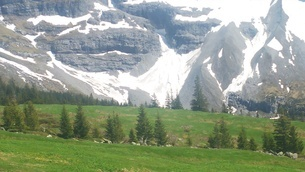 スイス ユングフラウ地方 クライネシャイディック~ヴェンゲンアルプ ハイキングコース 26 の写真素材 [FYI02981313]