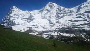 スイス ユングフラウ地方 クライネシャイディック~ヴェンゲンアルプ ハイキングコース 28の写真素材 [FYI02981315]