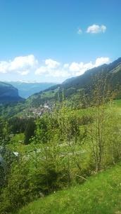 スイス ユングフラウ地方 ヴェンゲンアルプ~ウェンゲン 1の写真素材 [FYI02981320]