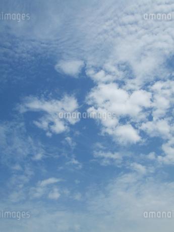 空の写真素材 [FYI02981476]