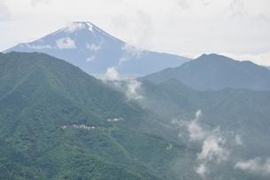 今倉山の松山から望む富士山の写真素材 [FYI02981772]