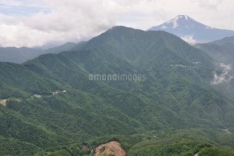 今倉山の松山から望む富士山の写真素材 [FYI02981773]