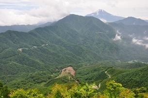今倉山の松山から望む富士山の写真素材 [FYI02981774]