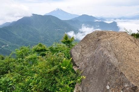 今倉山 松山から望む富士山の写真素材 [FYI02981788]