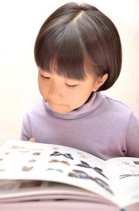 読書する女の子の写真素材 [FYI02981813]