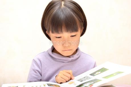 読書する女の子の写真素材 [FYI02981814]