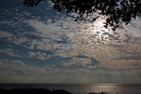 逆光の太陽に照らされる穏やかな海とひつじ雲の写真素材 [FYI02981840]
