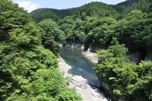夏の早戸川の写真素材 [FYI02981861]