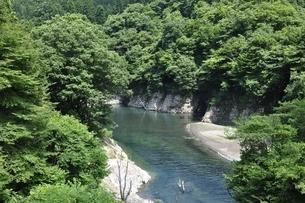 夏の早戸川の写真素材 [FYI02981863]