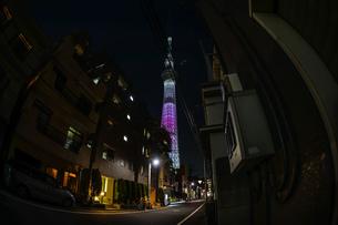 東京の街並みと東京スカイツリーの写真素材 [FYI02981996]