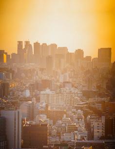 新宿の夕暮れの写真素材 [FYI02982154]