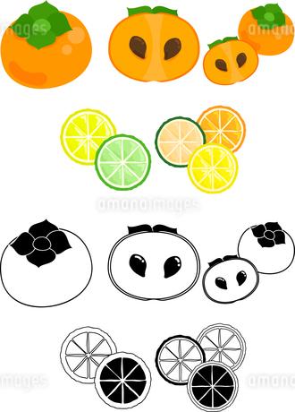 柿と柑橘の可愛いアイコンのイラスト素材 [FYI02982356]