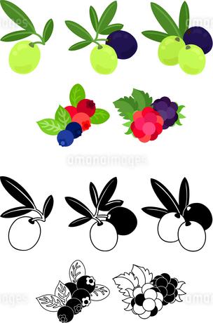 オリーブ とブルーベリーとクランベリーとラズベリーとブラックベリーの可愛いアイコンのイラスト素材 [FYI02982357]