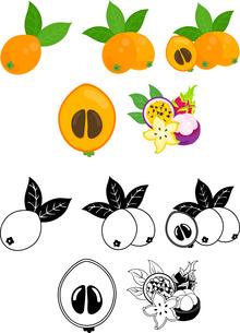 ビワとトロピカルフルーツの可愛いアイコンのイラスト素材 [FYI02982358]