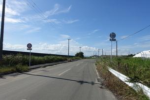道路の写真素材 [FYI02982471]