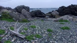 室戸岬の写真素材 [FYI02982589]