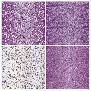 紫 ラメ 背景のイラスト素材 [FYI02982598]
