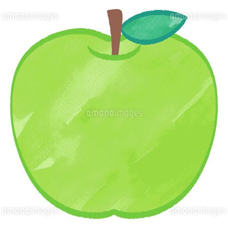 青りんごのイラストのイラスト素材 [FYI02982656]