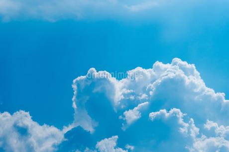 真夏の空の写真素材 [FYI02982710]