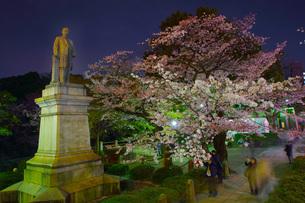 吉田茂像と桜の写真素材 [FYI02982723]