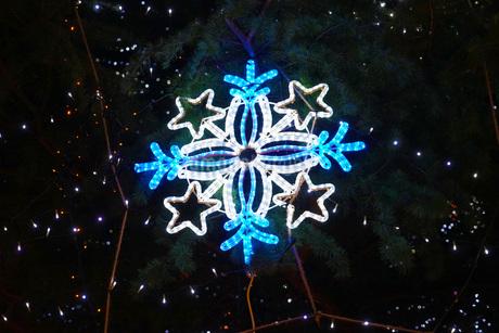 クリスマスの装飾の写真素材 [FYI02982729]