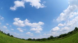 草地と広がる青空と雲の写真素材 [FYI02982746]