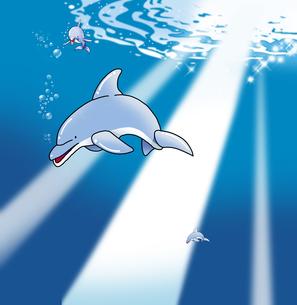 きらめく水面とイルカのイラスト素材 [FYI02982795]