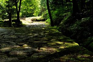 落合石畳の写真素材 [FYI02982828]