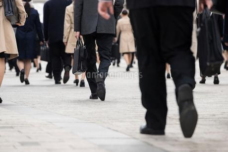 就活する大学生の後ろ姿の写真素材 [FYI02982885]