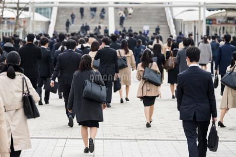 就活する大学生の後ろ姿の写真素材 [FYI02982893]