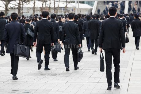 就活する大学生の後ろ姿の写真素材 [FYI02982894]