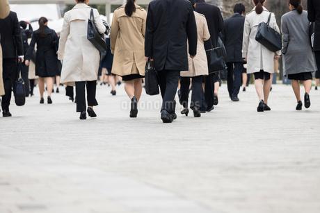 就活する大学生の後ろ姿の写真素材 [FYI02982895]