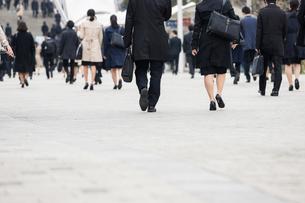 就活する大学生の後ろ姿の写真素材 [FYI02982898]