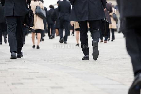 就活する大学生の後ろ姿の写真素材 [FYI02982899]