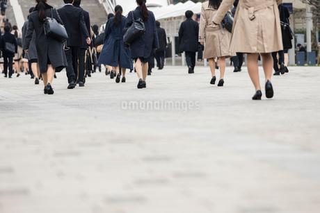 就活する大学生の後ろ姿の写真素材 [FYI02982902]