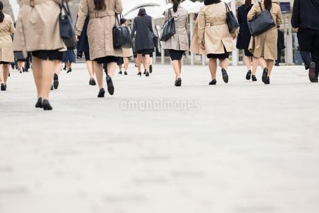 就活する大学生の後ろ姿の写真素材 [FYI02982903]