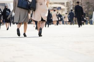 就活する大学生の後ろ姿の写真素材 [FYI02982907]