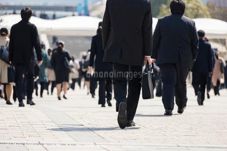 就活する大学生の後ろ姿の写真素材 [FYI02982908]